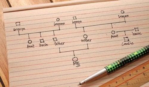 En steg-för-steg-guide till att göra ett genogram