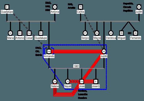 information till genogram