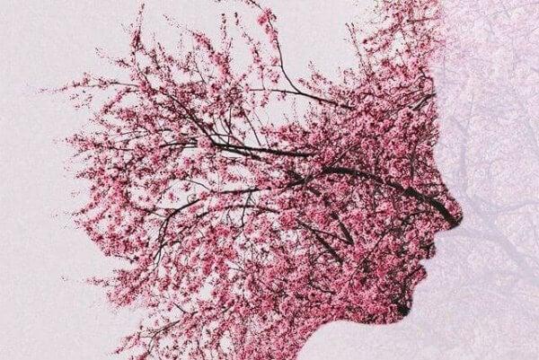 Ansikte av blommor