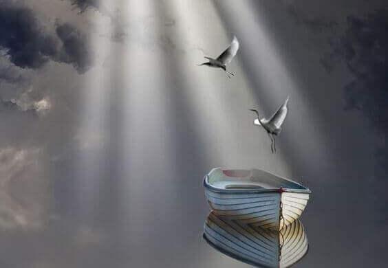 Fåglar över sjö
