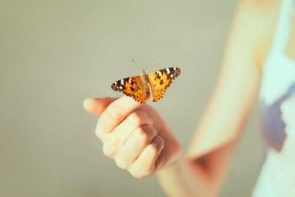 Fjäril på finger