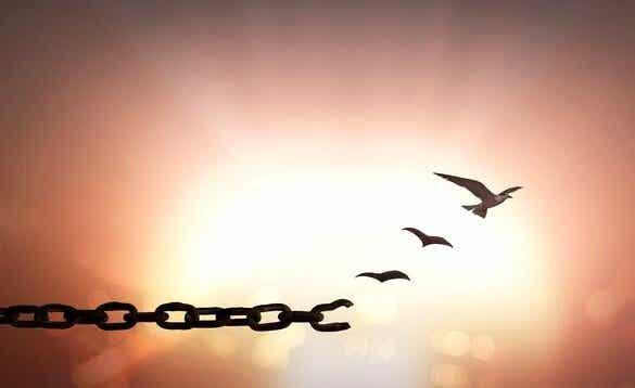 7 fantastiska och inspirerande fraser om förlåtelse