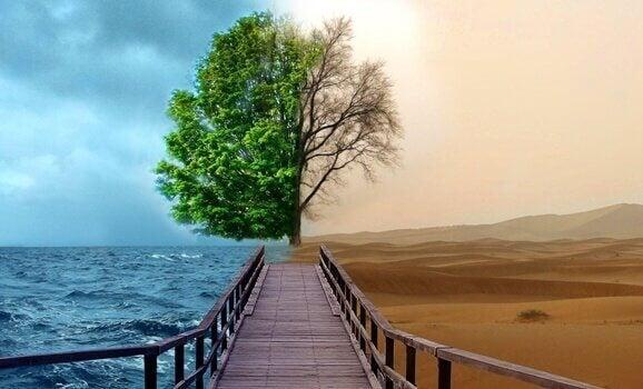 Gestaltterapi mot depression: 4 nycklar till ett lyckligare liv