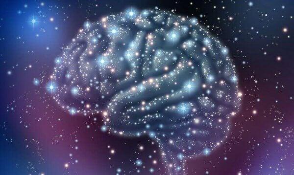 Hjärna i rymden