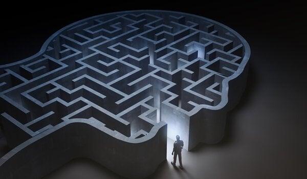 Hjärnan är en labyrint
