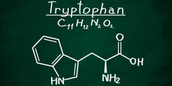 Kemisk formel för tryptofan