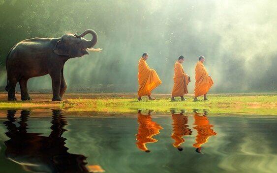 Munkar och elefant