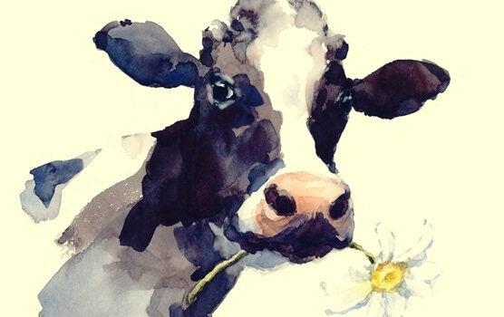 Berättelsen om kon: när rutiner begränsar oss