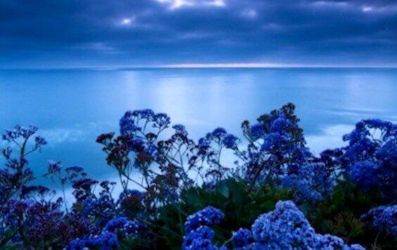 Den stresslindrande färgen: blå
