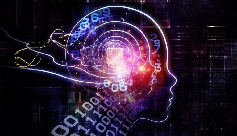 Hjärna med binär information.