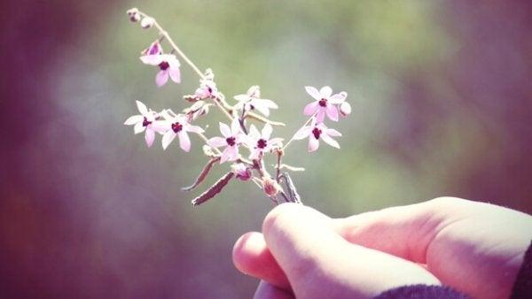 Person som håller en kvist med blommor.