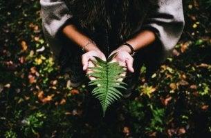 Att finna mening i livet