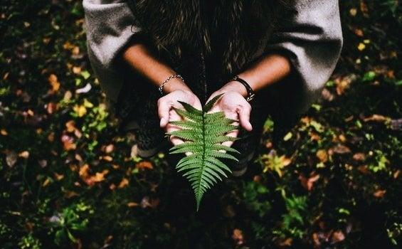 Att finna mening i livet kräver frid och tålamod