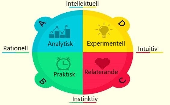 Hjärndominans enligt Herrmanns kvadrantmodell: vilken är din typ?