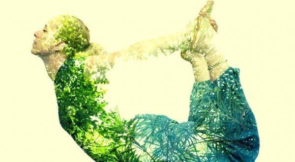 Inre lugn och harmoni