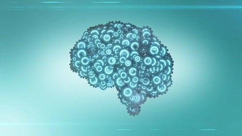 Optimera din hjärna