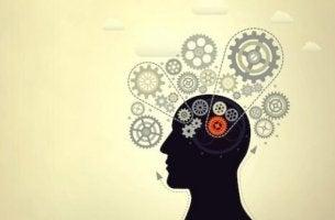 Tips för att öka sin intelligens