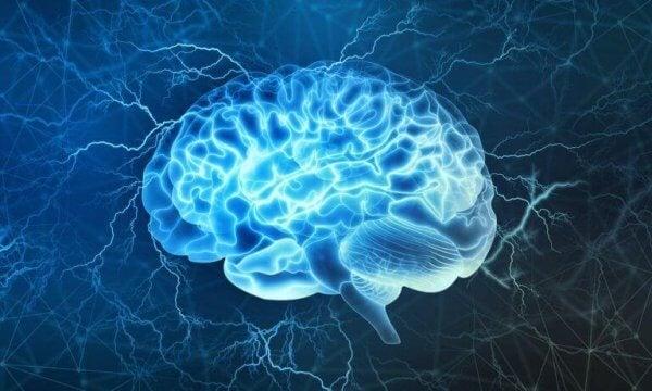 Hjärnan påverkas av avkopplande musik