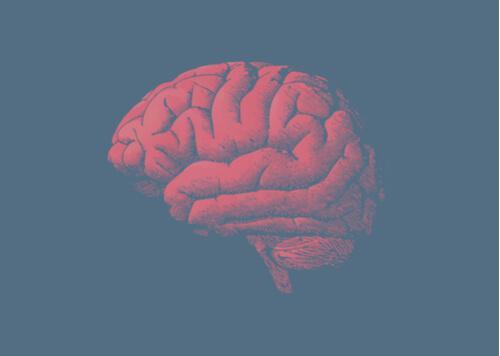 Hjärnan åldras, och anledningen ligger i dina gener
