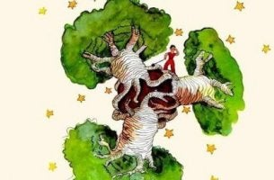 Vad bör du göra om du har ett baobabträd i hjärtat?