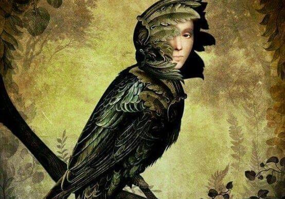 Fågel med mänskligt ansikte.
