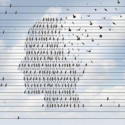 Fåglar som utgör ett mänskligt huvud.