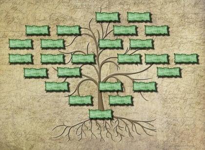 Släktträd uppritat på papper