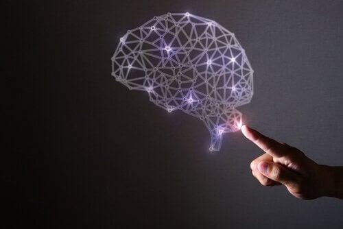 Vår fantastiska hjärna och dess egenskaper.