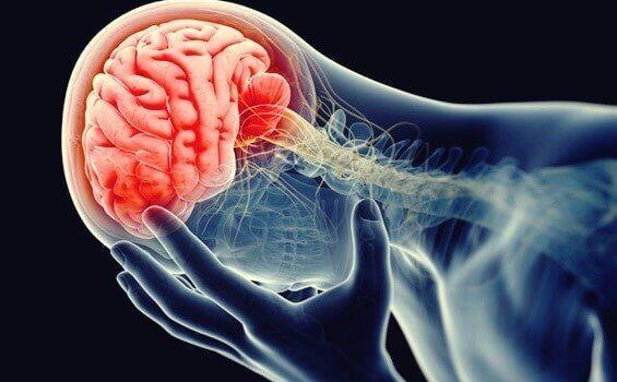 Inflammerad hjärna.