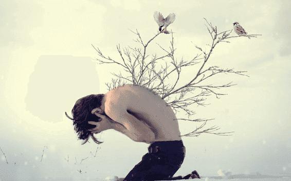 Pojke med grenar på ryggen