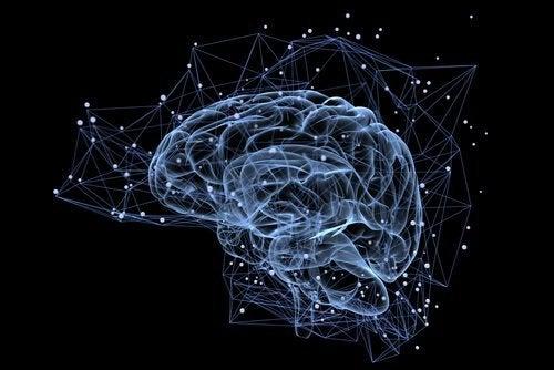 Vår hjärna har ett behov av tystnad