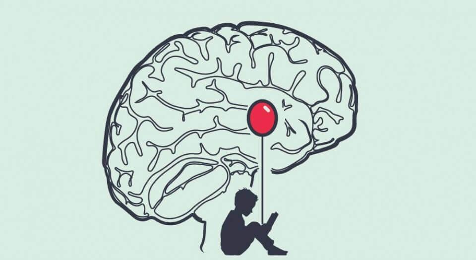Amygdala i hjärnan