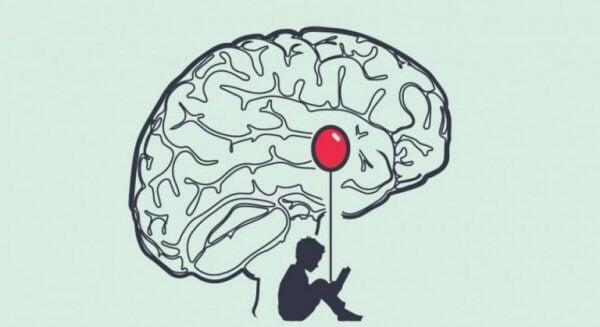 inuti en lögnares hjärna