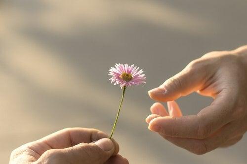 Räcker över en blomma.