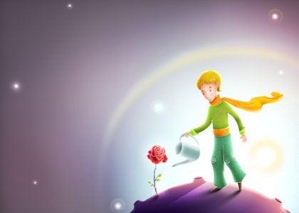 Pojke vattnar ros