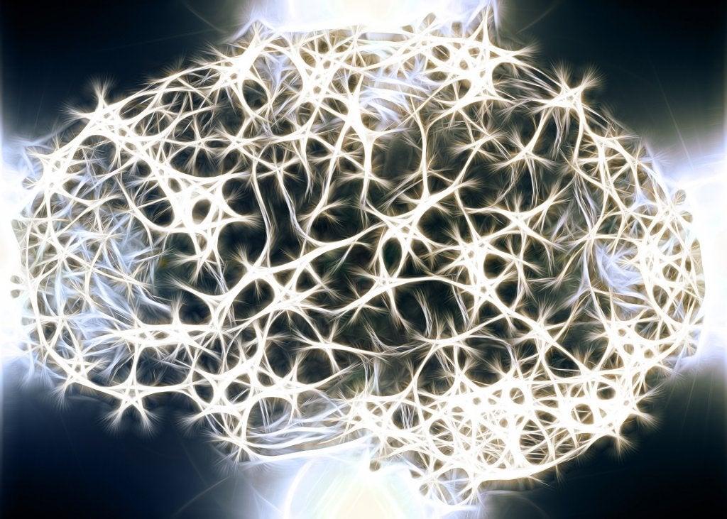 Varför är den vita substansen i vårt nervsystem så viktig?