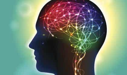 Anandamid: signalsubstansen som influerar lycka
