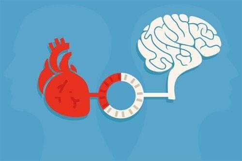 Förnuft och känsla: en balans för goda beslut