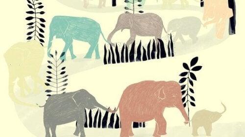 Elefanter på tavla