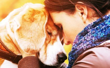 Hur man kan älska ett djur så mycket