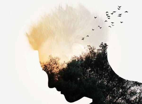 Man med skog i huvudet.