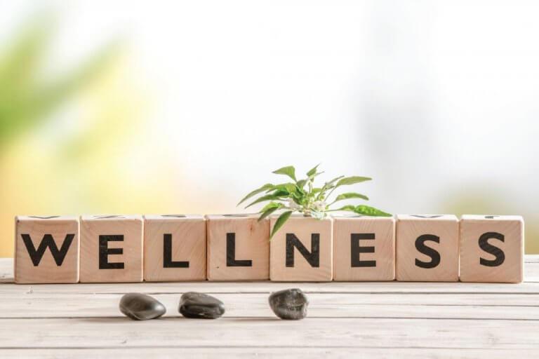 wellness – integrerad hälsa