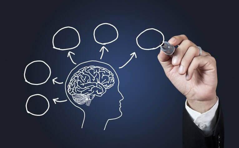 10 anledningar till att studera psykologi