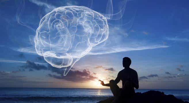 Upptäck wellness: hälsa & balans i kropp & sinne