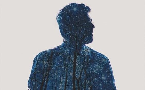 Siluett av man med träd och stjärnhimmel