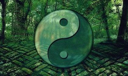 Laozi-citat som hjälper dig att utvecklas