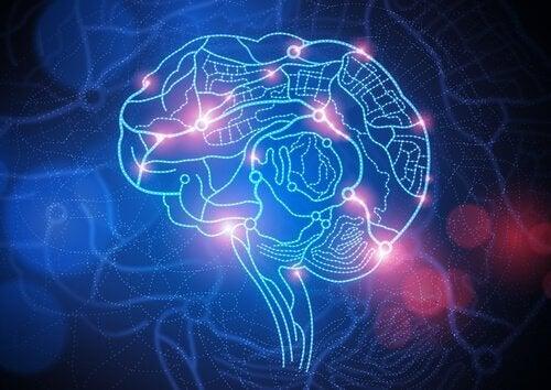 Upplyst hjärna