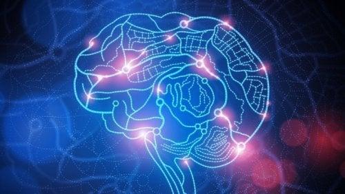 Hjärna med områden som är aktiverade