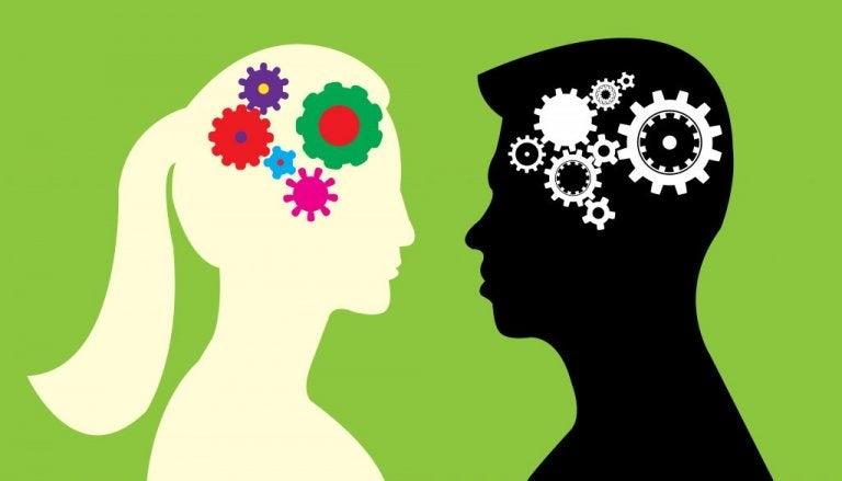 Skillnader mellan den manliga och kvinnliga hjärnan