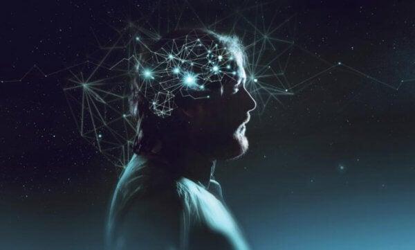 Människans fantastiska hjärna.